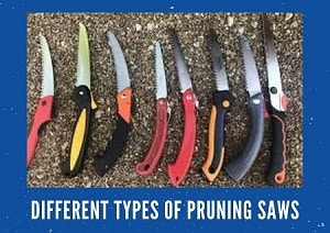 Different Types of Pruning Saws